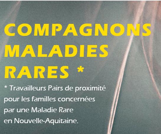 Lancement du site internet compagnonsmaladiesrares.org en Nouvelle Aquitaine