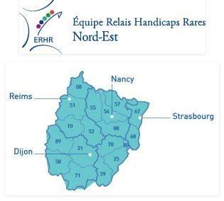 A Strasbourg, le 8 novembre 2018, l'ERHR Nord-Est organise une journée sur les comportements problèmes dans le cas d'handicap rare