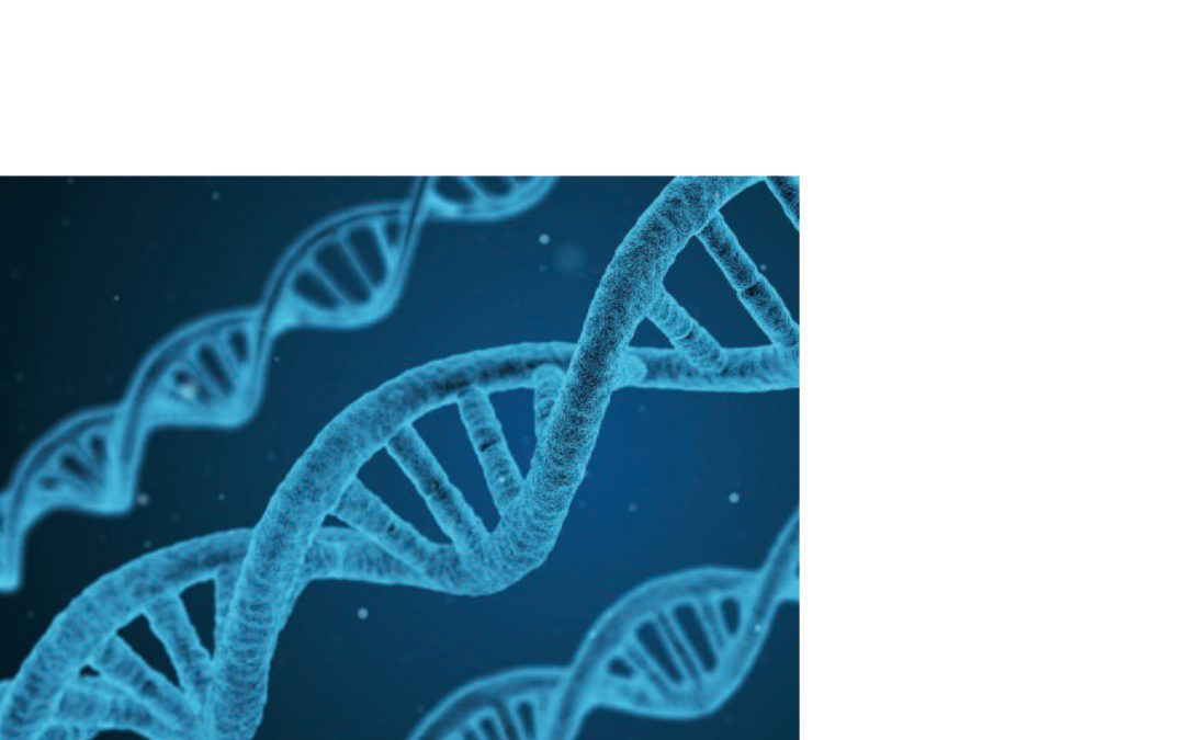 L'enfant et sa famille face à la génétique dans la revue Contraste